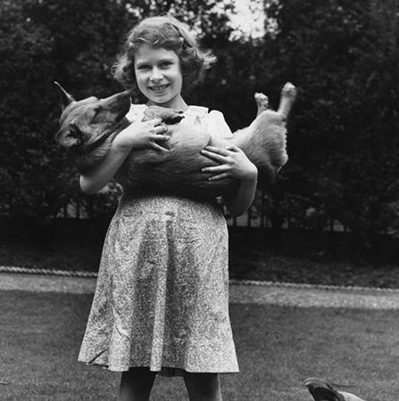 В детстве с собакой