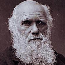 Биография ученого Чарлза Дарвина