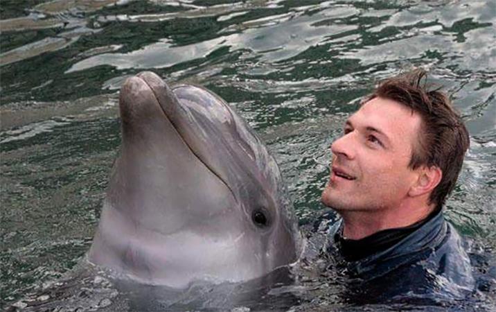 Константин Стрельников с дельфинами